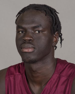 Southern illinois athletics 40 thik bol fandeluxe Image collections